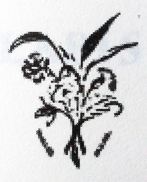 "Trademark of the company Stern & Co. Label names were ""Heather"", ""Cornflower"" or ""Rheingold""."